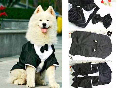 Pet Dog Tuxedo Jacket with built in shirt collar and bow tie for Dog Sizes 3XL to 5XL
