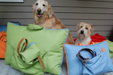 "Jennifer Brooks LLC ""Zip Tote"" Portable Dog Bed in Color Parrot Green - Daisey's Doggie Chic - 8"
