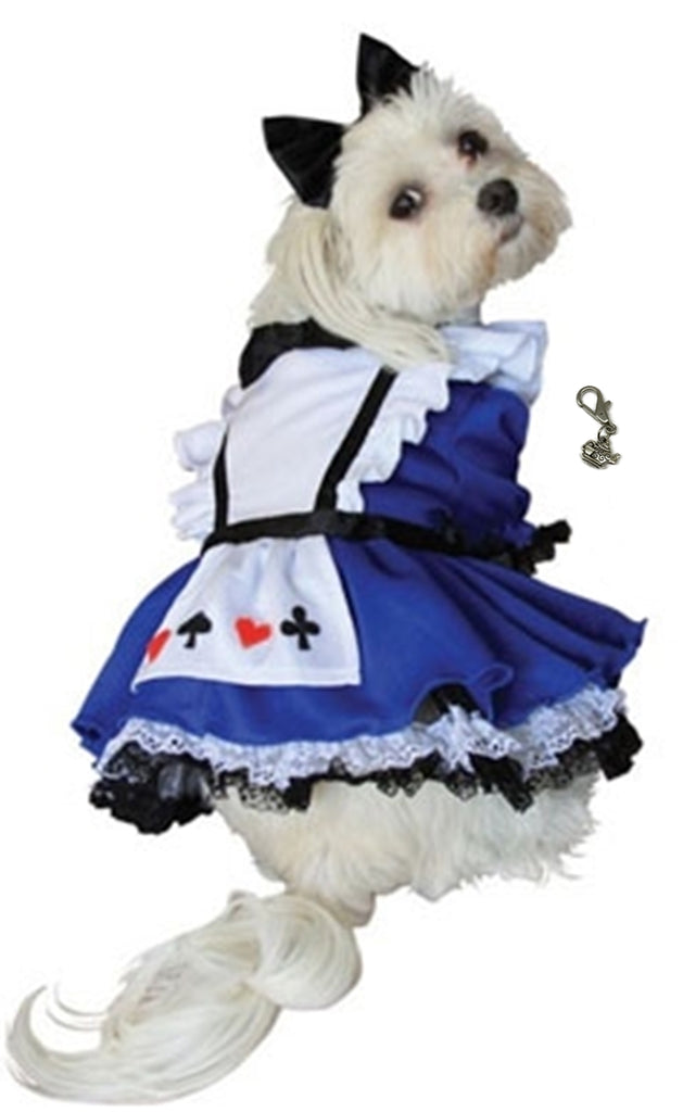 Alice in Wonderland Dog Costume with Charm - Daisey's Doggie Chic