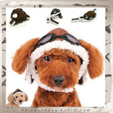 Aviator Hat with Goggles and Themed Charm for Dogs - Daisey's Doggie Chic