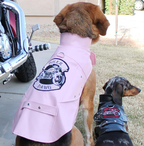 Biker Dawg Motorcycle Harness Jacket and Charm -Choice of 2 Colors Black or Pink