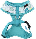 Botanical Garden Fresh Floral Choke-Free Halter Harness in 4 Color Patterns - Daisey's Doggie Chic