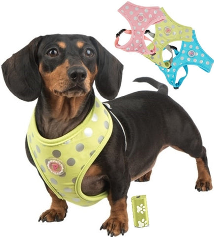 Chic Polka Dots Choke-Free Halter Harness in 3 Colors - Pink, Blue or Lime Green - Daisey's Doggie Chic