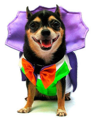 """Dogula"" Vampire Dog Costume with Reversible BowTie - Daisey's Doggie Chic"
