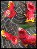 Fire Chief Raincoat with attached Helmet Hoodie in color Red/Yellow - Daisey's Doggie Chic - 4