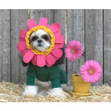 Flower Pot Pajama Styled Pet Costume with Petals Headpiece - Daisey's Doggie Chic