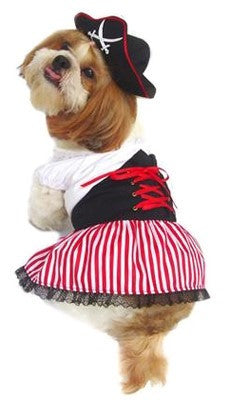 Lady Buccaneer Pirate Costume Dress with Tricorner Hat - Daisey's Doggie Chic