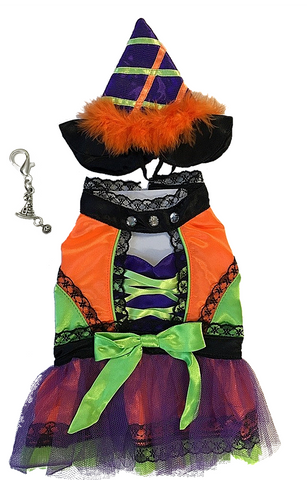 Halloween Witch Dog Costume with Tall Hat - Neon Brights
