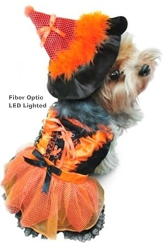 Orange Halloween Witch Dog Fiber Optic LED Lighted Costume with Tall Hat - Daisey's Doggie Chic - 1