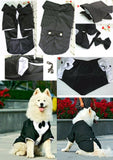 Wedding Formal Black Tails Tuxedo Jacket With Detachable Bow Tie and Themed Accessory - For Bog Dog Sizes 3XL to 5XL - Daisey's Doggie Chic