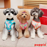 "Puppia ""Spring Garden Floral"" Choke-Free Halter Harness in Color Sky Blue - Daisey's Doggie Chic - 4"