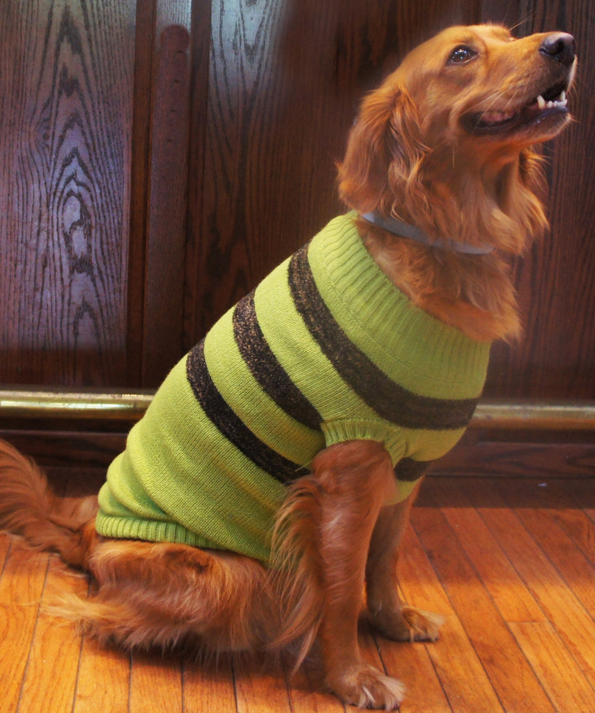 Doggie Design Striped Dog Sweater in Color Olive Green/Chocolate Brown - Daisey's Doggie Chic