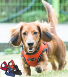 Trek Reflective Choke-Free Step-in Vest Harness with Smart Tag- 4 Color Choices  (Blue,Red,Orange or Black) - Daisey's Doggie Chic