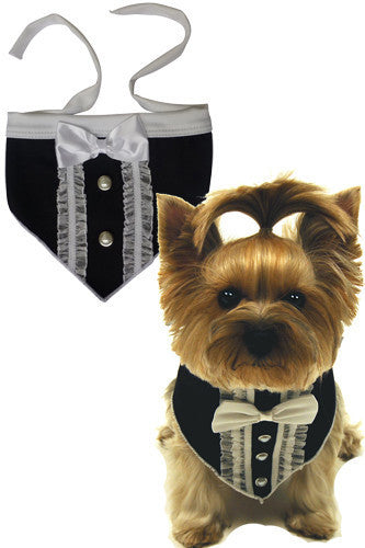 Formal Tuxedo Bandana Scarf in color Black/Ivory - Daisey's Doggie Chic