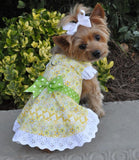Yellow Daisies Floral and Lace Party Harness Dress with Charm and matching Leash - Daisey's Doggie Chic