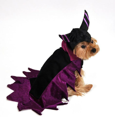 """Wicked"" Dark Fairy Dog Costume - Daisey's Doggie Chic"