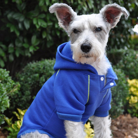 Fleece Lined Sport Sweatshirt Hoodie for Dogs in Color Nautical Blue - Daisey's Doggie Chic