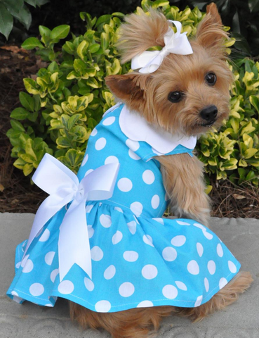 Blue Polka Dots Harness Party Dress with matching Leash set in Blue/White - Daisey's Doggie Chic