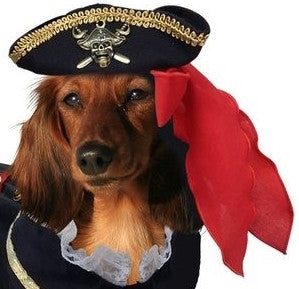 Buccaneer Pirate Hat for Dogs - Daisey's Doggie Chic
