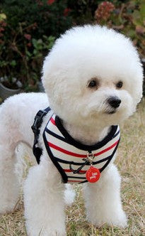 "Puppia ""Capitane"" Nautical Choke-Free Halter Harness with Smart Tag- in 2 Colors - Daisey's Doggie Chic - 4"