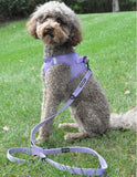 "6-Way Multi Function Adjustable Leash with Soft Grip Handle - range of 3 to 5ft - 1"" wide - Available in 5 colors - Daisey's Doggie Chic"