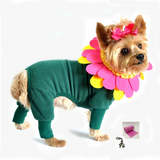 Flower Pot Pajama Styled Pet Costume with Petals Headpiece - Includes Charm and Accessory - Daisey's Doggie Chic