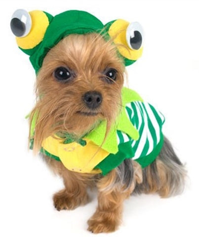 Cute Green Frog Hoodie Costume Sweater for Dogs - Daisey's Doggie Chic