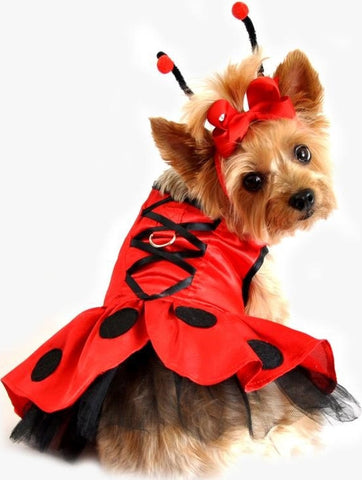 Ladybug Fairy Costume Dress with Antennae and Leash