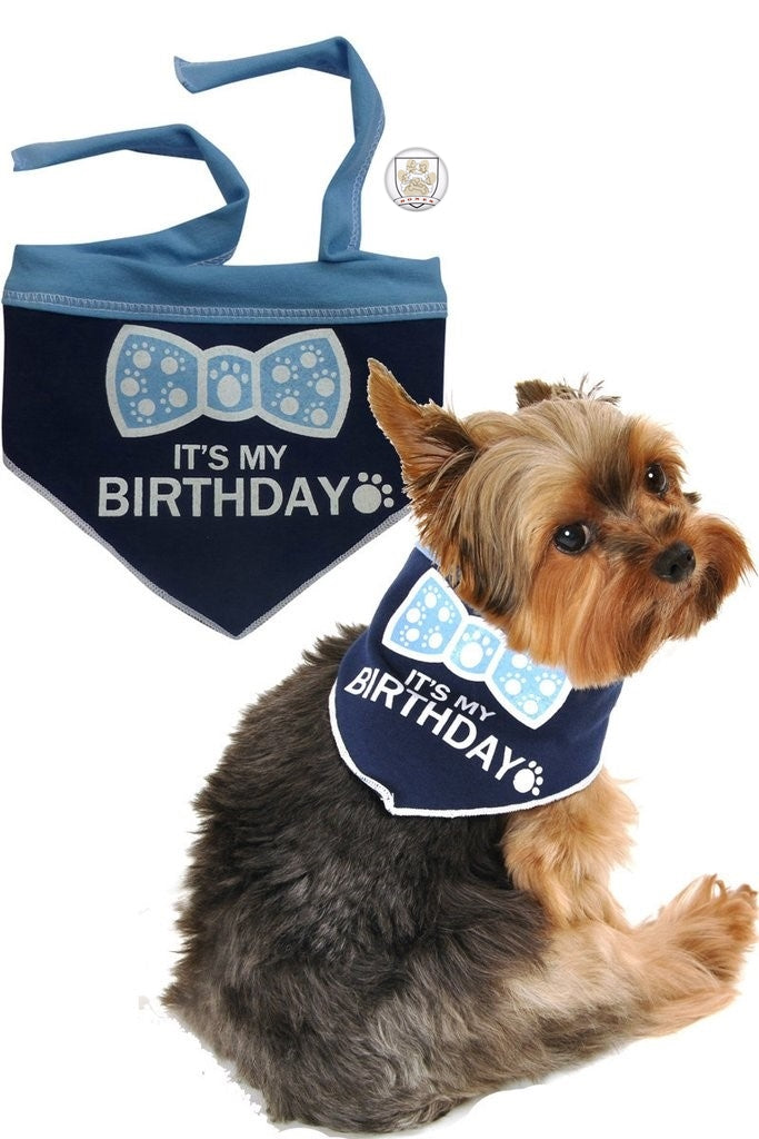 It's My Birthday (Boy) Bandana Scarf with Pin in color Blue/White - Daisey's Doggie Chic