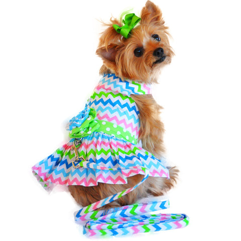 New Wave Multi-Colored Party Harness Dress with matching Leash - Daisey's Doggie Chic