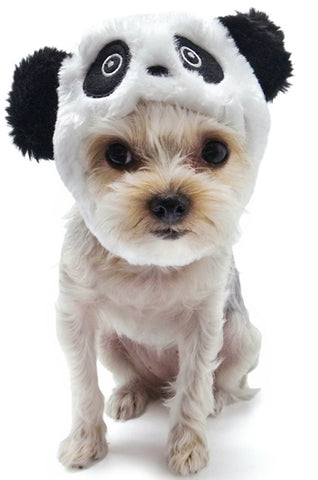 Plush Panda Bear Hat for Dogs - Sizes XS to XL - Daisey's Doggie Chic