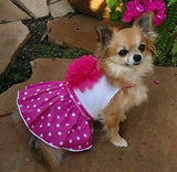 Pink Polka Dotted Daisy Party Dress - Daisey's Doggie Chic