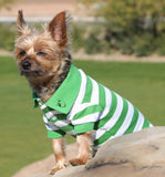 Classic Striped Polo Shirt in color Green Stripes - Daisey's Doggie Chic
