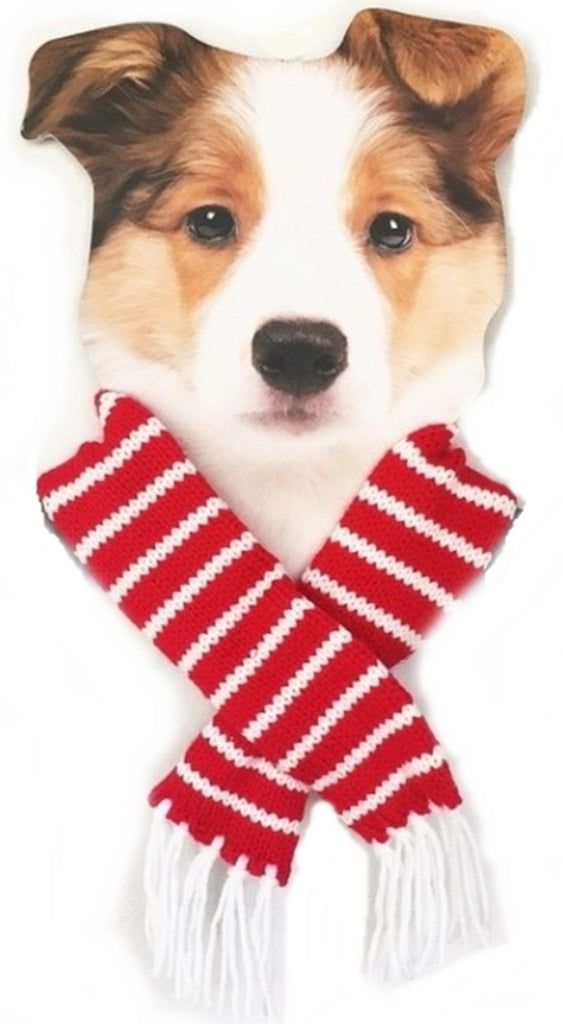 Candy Cane Striped Knit Fringe Scarf for Dogs Available in 4 Colors - Daisey's Doggie Chic