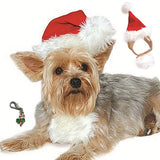Plush Red Santa Hat with Attached Beard - Includes Candy Cane Charm - Dog Sizes XS to L - Daisey's Doggie Chic