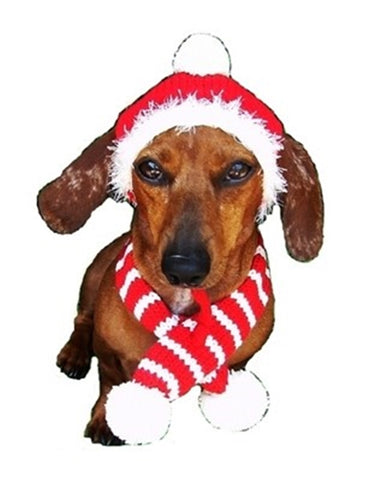 Candy Cane Striped Knit Hat & Scarf Set -for Dogs -in Color Red/White - Daisey's Doggie Chic