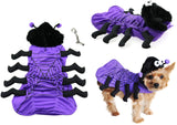 Spooky Cute Isty Bitsy Purple Plush Spider Costume for Dogs includes theme accessory - Daisey's Doggie Chic