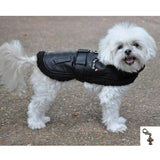 Maverick Top Dog Pilot Jacket Harness with Airplane Charm & Leash - color Black - Daisey's Doggie Chic