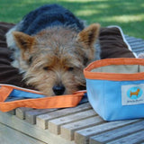 "Jennifer Brooks LLC ""Zip Tote"" Portable Dog Bed in Color Air Blue - Daisey's Doggie Chic - 4"