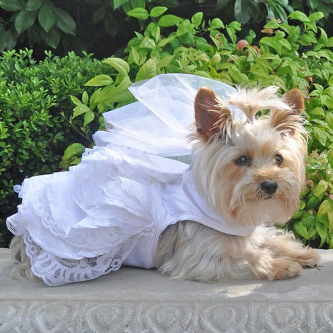 "White Wedding ""Satin,Organza Pearls and Lace"" Harness Dress with matching Leash - Daisey's Doggie Chic"