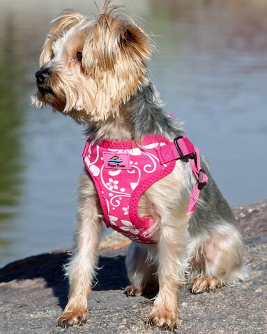 Wrap-Snap-n-Go  Choke-Free Harness in Pink Hibiscus - Daisey's Doggie Chic