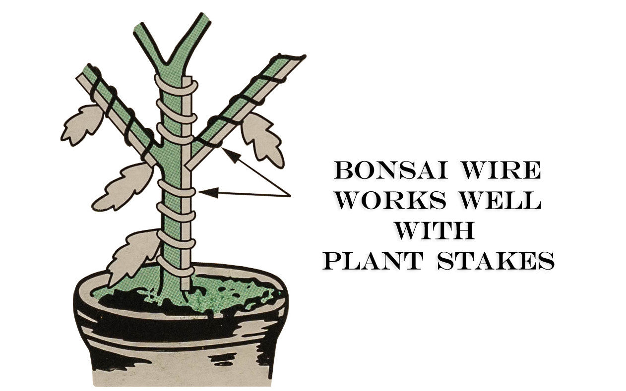 Bonsai Wire ~ Made in Japan