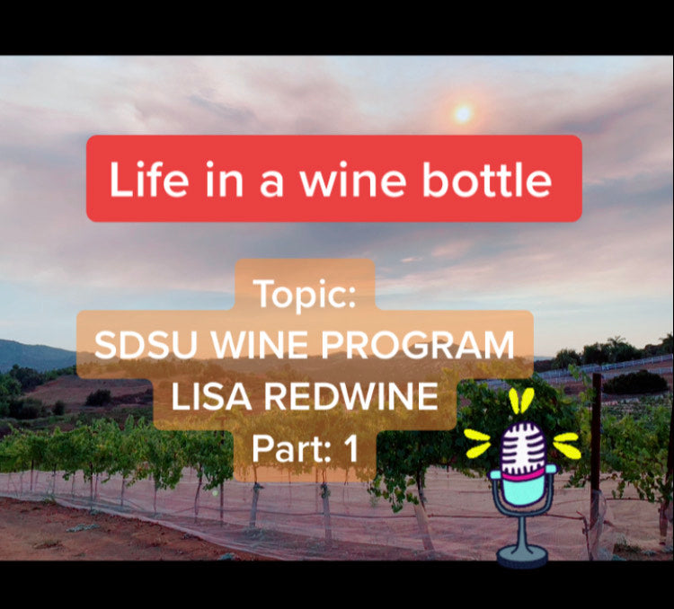 Ep:10/pt 1 - Life In A Wine Bottle - Special Guest Lisa RedWine w/ SDSU Wine Program