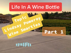 Ep:12/pt 1 - Life In A Wine Bottle - Special Guest Lindsay Pomeroy w/ Wine Smarties