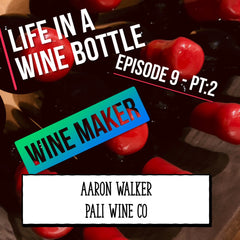 Wine Tasting - Wine Making - life in a wine bottle