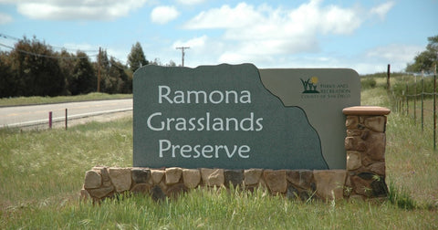 Ramona Grasslands Preserve, Ramona wine tasting, wine tasting, hike and then wine taste, Castelli Family Vineyards