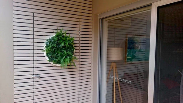 Evergreen Disk on Wall