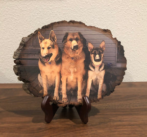 Wood Photo (Pet/Animal)