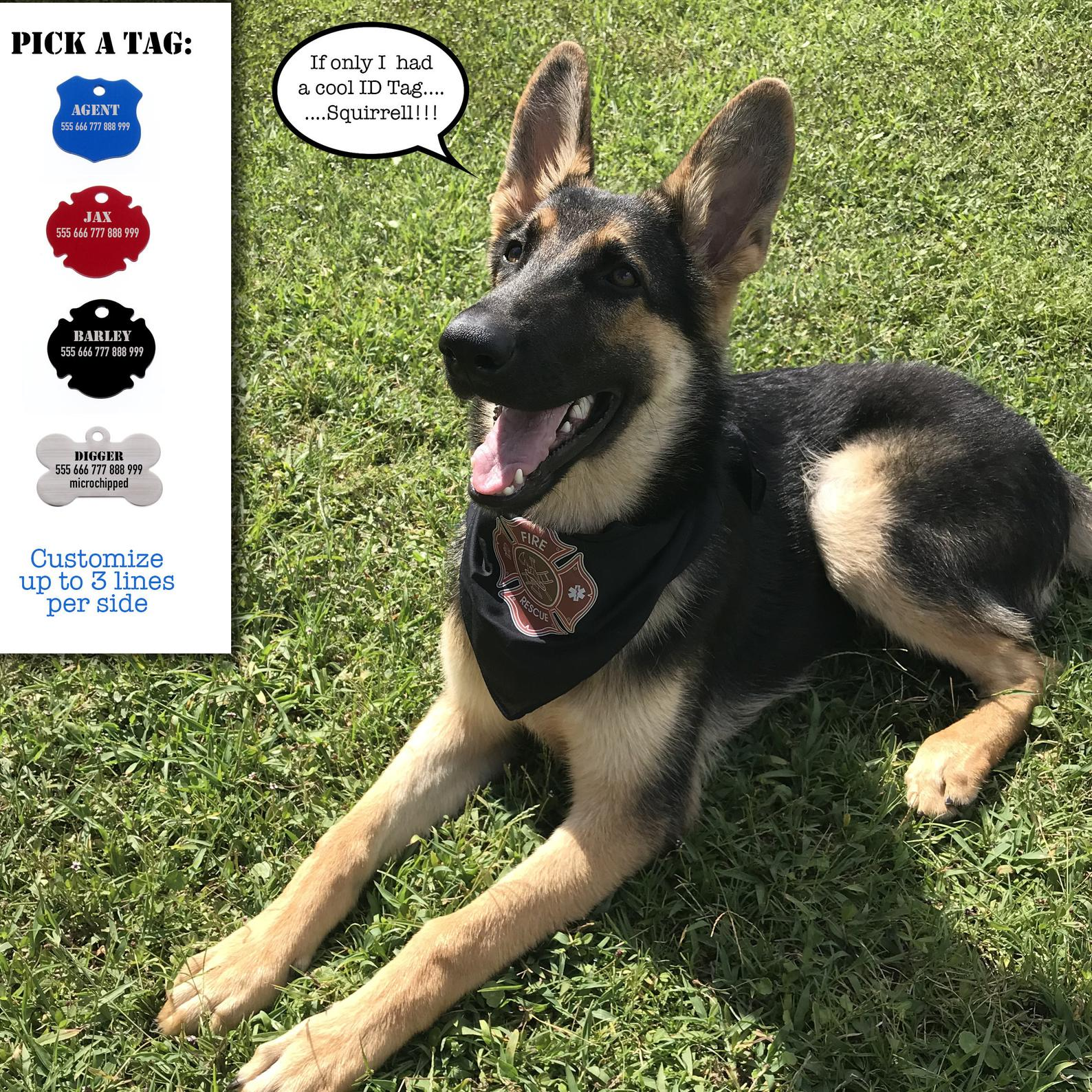 Custom Dog ID Tag