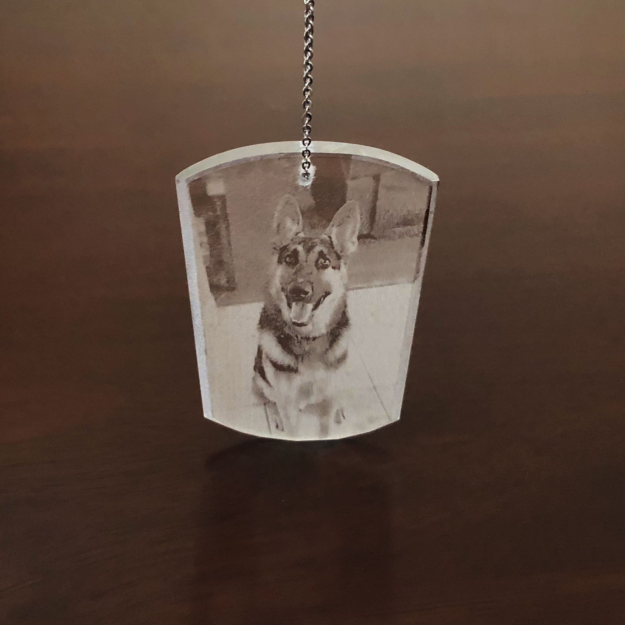 Pet Photograph  Ornament